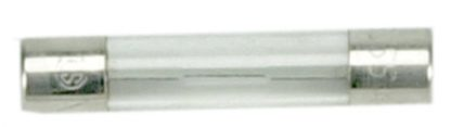 20 amp 32 VAC Glass Fuse
